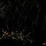 Feuerwerk_12