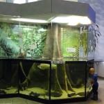 NaturkundeMuseumKA_005