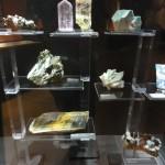 NaturkundeMuseumKA_098